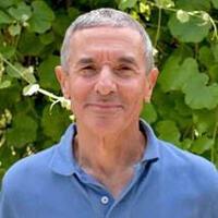 Lewis Feldman